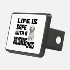Life Is Safe With A Bologn Hitch Cover