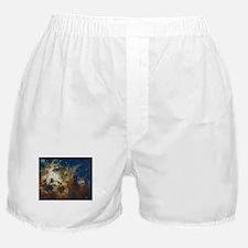 Tarantula Nebula Galaxy Boxer Shorts