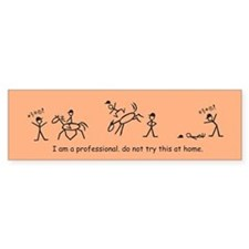 I am a Professional: Trainer / Bumper Bumper Sticker