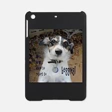 Begging iPad Mini Case