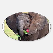 BABY ELEPHANT , LOVE Decal