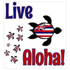 Live Aloha! Hawaii Poster