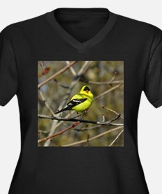 gold finch Plus Size T-Shirt