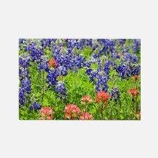 Cute Indian paintbrush Rectangle Magnet