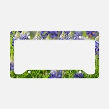 Unique Bluebonnets License Plate Holder