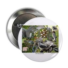"""Funny Tampa 2.25"""" Button (100 pack)"""