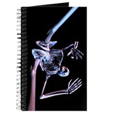 Purple Skeleton Journal
