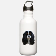 Cute King charles spaniel Water Bottle