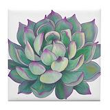 Succulents Tile Coasters