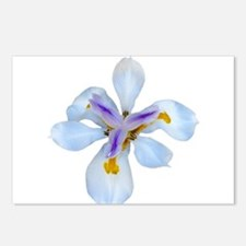 Cute Iris Postcards (Package of 8)