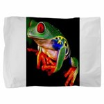 Colorful Frog Pillow Sham