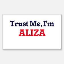 Trust Me, I'm Aliza Decal