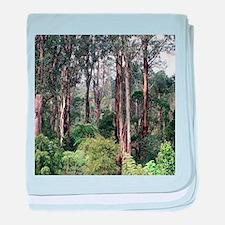 Dandenong Ranges Rainforest baby blanket
