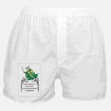 Cute Fairy godmother Boxer Shorts