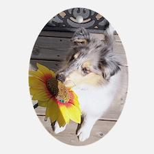 cute dog Oval Ornament