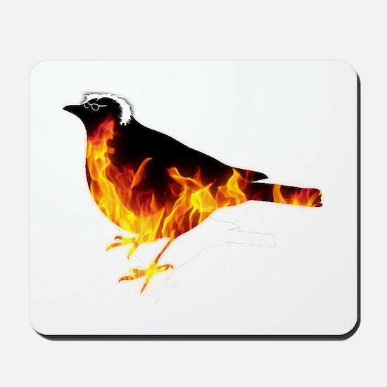 Feel the Bern Bird Mousepad
