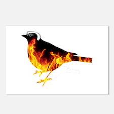Feel the Bern Bird Postcards (Package of 8)