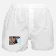 blue merle Boxer Shorts