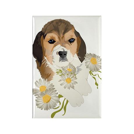 Beagle Pup & Daisies Rectangle Magnet