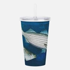 Striper Acrylic Double-Wall Tumbler