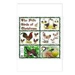 Christmas Birds Postcards (Package of 8)