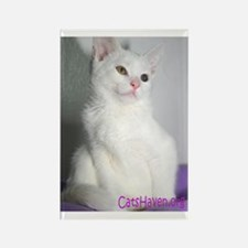Cats Haven Rescue 187 Rectangle Magnet