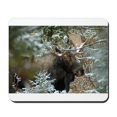 Bull Moose 2 Mousepad