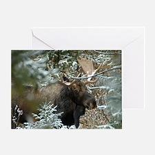 Bull Moose 2 Greeting Card