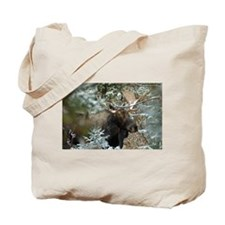 Bull Moose 2 Tote Bag
