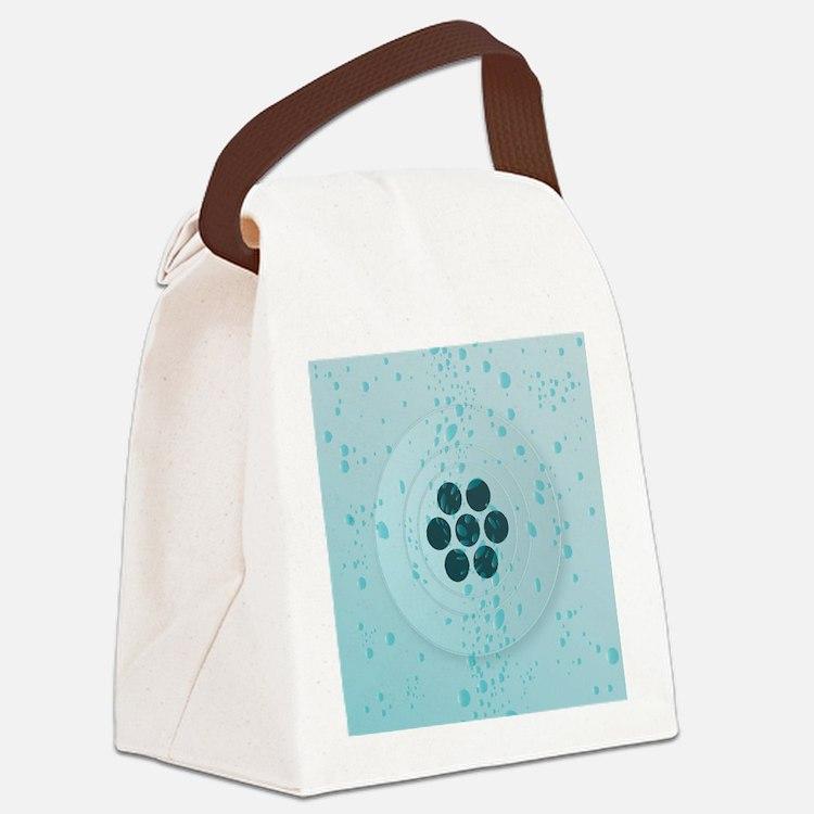 Cute Domestic bathroom Canvas Lunch Bag
