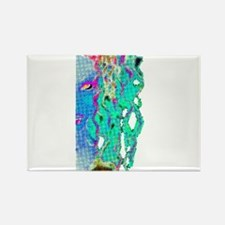 Lilith Rectangle Magnet (10 pack)