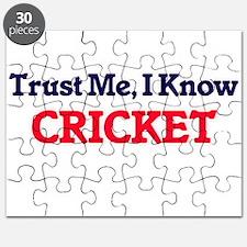 Trust Me, I know Cricket Puzzle