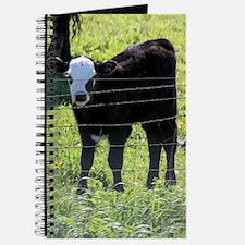 Calf Journal