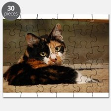 Gypsy Puzzle