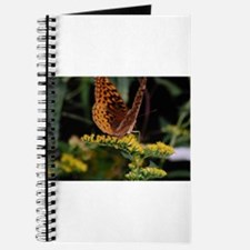 visitor to the goldenrod Journal