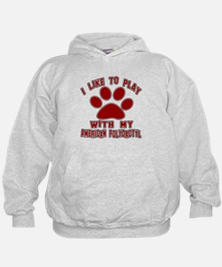 I Like Play With My American Polydacty Hoodie