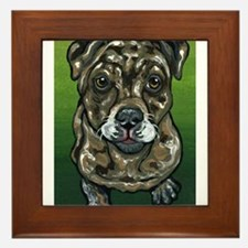 Catahoula leopard Hound Framed Tile