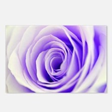 Beautiful Pastel Rose Flo Postcards (Package of 8)