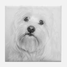 Cute Coton de tulear Tile Coaster