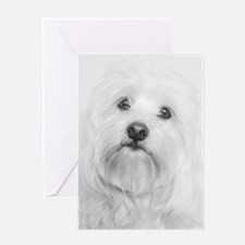 Coton de Tulear Head Tilt Greeting Cards
