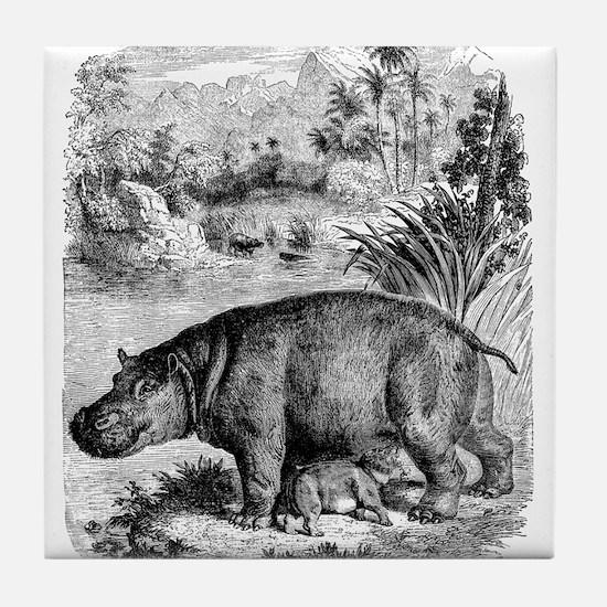 Vintage Hippopotamus Baby Hippo Black Tile Coaster