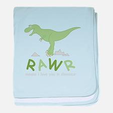 Dinosaur Rawr baby blanket