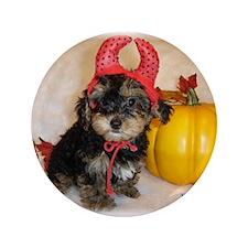 """Yorkiepoo halloween 3.5"""" Button"""