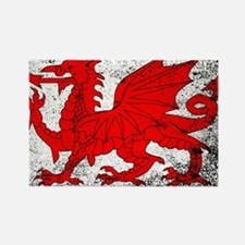 Cute Welsh dragon Rectangle Magnet