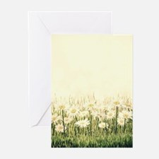 Rustic Daisies Greeting Cards