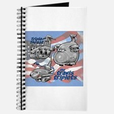 Travis AFB Triplets Journal