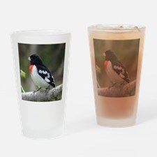 Rose-breasted Grosbeak Drinking Glass