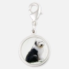 old english sheepdog puppy sitting Charms