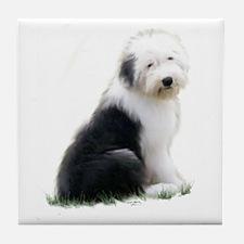 old english sheepdog puppy sitting Tile Coaster