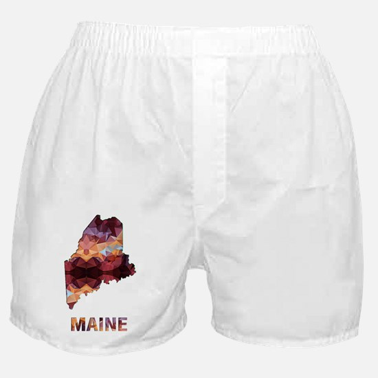 Cute Maine coon Boxer Shorts